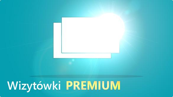 Tanie wizytówki Web-To-Print.pl